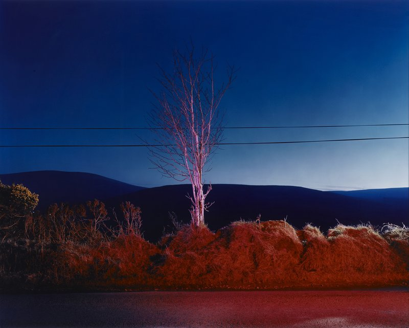 Gerard Byrne, A Country Road, a Tree. Evening. Somewhere between Tonygarrow and Cloon Wood, below Prince Williams Seat, Glencree, Co. Wicklow, 2007
