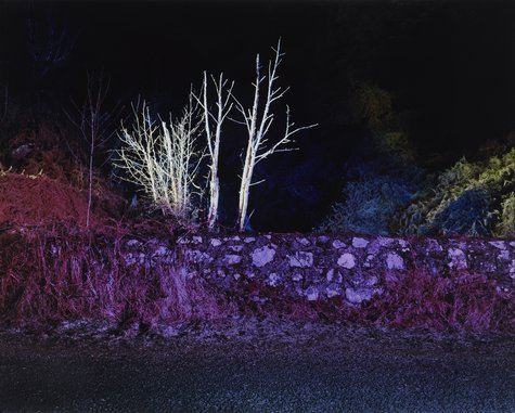 Gerard Byrne, A country Road, a Tree. Evening. At the Bridge where Lough Bray Lower drains into the Glencree River, Co. Wicklow, 2007