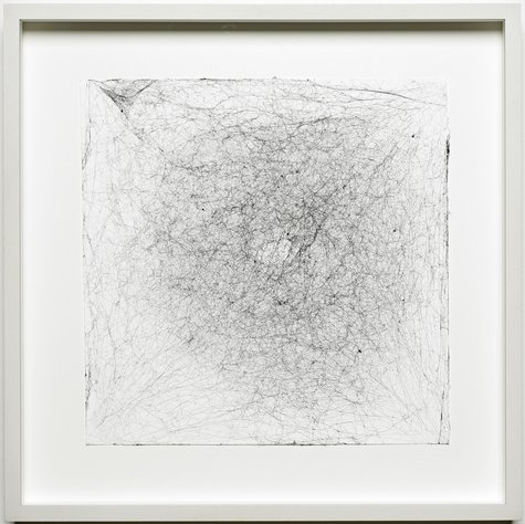 Tomás Saraceno, Semi-Social Solitary Mapping Of SPT 0243-49 By A Duo Of Cyrtophora Citricola – Two Weeks,  A Solo Parasteatoda Lunata – One Week And A Solo Tegenaria Domestica – Three Weeks , 2015