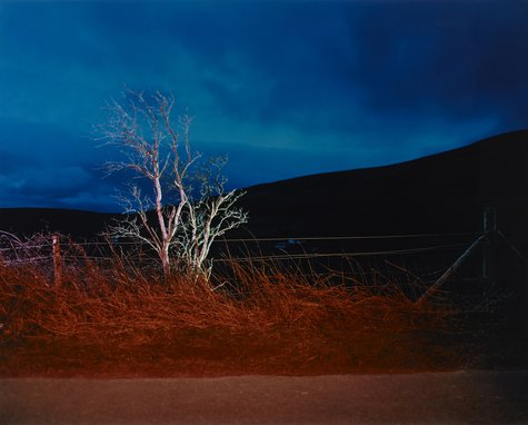 Gerard Byrne, A Country Road, a Tree. Evening. Beside Knocktree looking towards Crone and Bahana, Glencree, Co. Wicklow, 2007
